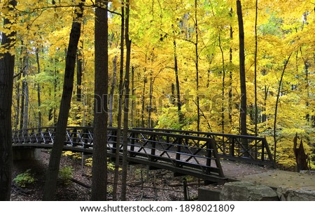 Fall color at Fallen Timbers Battlefield Royalty-Free Stock Photo #1898021809