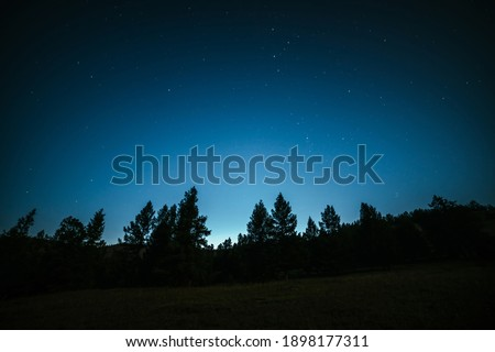 Dark atmospheric forest landscape with fir tops under night starry sky. Wild forest silhouette on mountain under star night sky. Beautiful silhouettes of coniferous trees on hill in dark starry night.