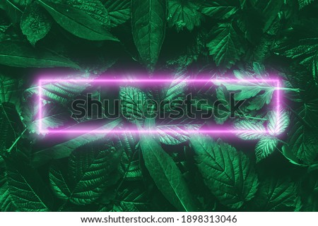 Neon pink frame on green natural plant background. Concept poster, watermark. Copy space