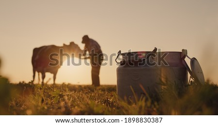 The silhouette of a farmer, stands near a cow. Milk cans in the foreground Royalty-Free Stock Photo #1898830387