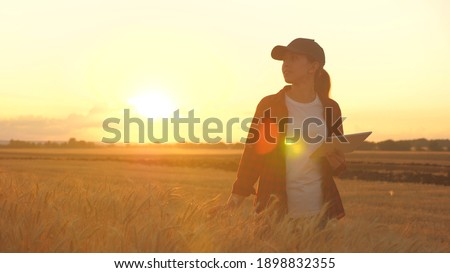 Agronomist woman farmer, business woman looks into a tablet in a wheat field. Modern technologists and gadgets in agriculture. Business woman working in the field. Farmer in wheat field at sunset. Royalty-Free Stock Photo #1898832355