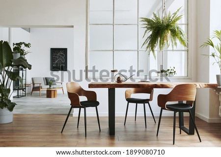 Stylish and botany interior of dining room with design craft wooden table, chairs, a lof of plants, window, poster map and elegant accessories in modern home decor. Template. Royalty-Free Stock Photo #1899080710