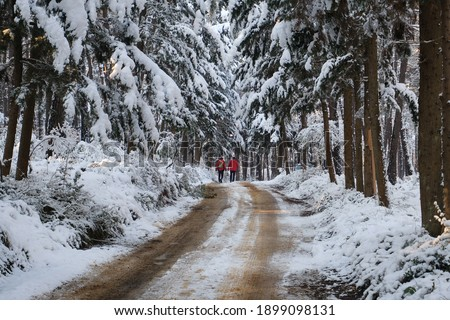 two men in red suits walking along the snowy forest road Royalty-Free Stock Photo #1899098131