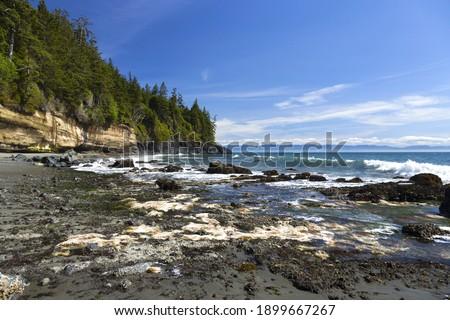 Mystic Beach Waterfront Juan De Fuca Famous Marine Hiking Trail Pacific Ocean Coastline at Vancouver Island BC Canada Royalty-Free Stock Photo #1899667267