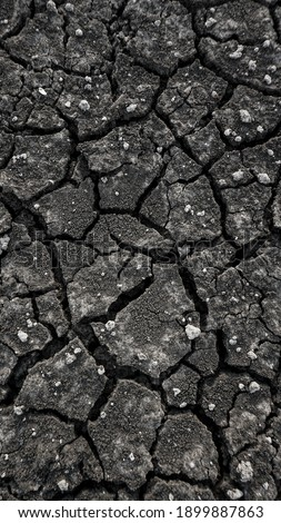 Land with a dry, rough, and cracked texture. Royalty-Free Stock Photo #1899887863
