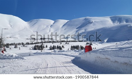 cedar mountain lebanon mountain in winter with snow  Royalty-Free Stock Photo #1900587844