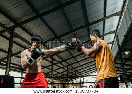 man fighter and coach training together with punching pads at boxing training camp. Guy in boxer glove doing punching workout with her coach Royalty-Free Stock Photo #1900937734