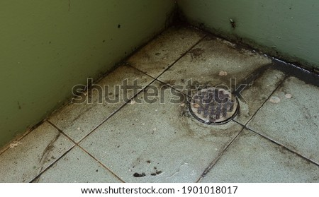 Neglected drain lid in bathroom clogged with hairs, obstruct water flowing, high angle view Royalty-Free Stock Photo #1901018017