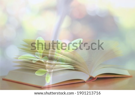 Stacked pictures of open books on small leaves