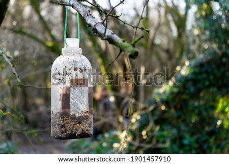 A plastic bottle has been recycled and reused as a bird feeder. It's hanging from a tree in a local forest. There's bird seed in it, but no birds in the photo. It's a sunny, but cold Winter day.