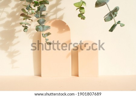 Minimal modern product display on beige background with eucaliptus leaves Royalty-Free Stock Photo #1901807689