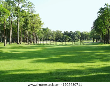 Background of evening golf course has sunlight shining down at golf course in Thailand. Nice scenery on a golf course at a late summer. Royalty-Free Stock Photo #1902430711
