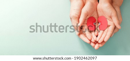 Adult and child holding kidney shaped paper, world kidney day, National Organ Donor Day, charity donation concept Royalty-Free Stock Photo #1902462097