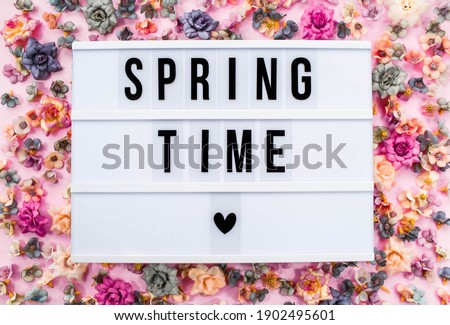 Stylish text frame lightbox with the inscription spring time.Colorful flowers all around. The concept of the beginning of spring. Copyspace.