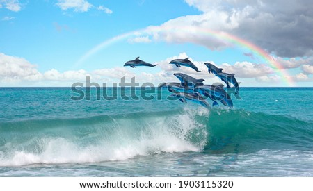 Group of dolphins jumping on the water Rainbow in the background - Beautiful seascape and blue sky Royalty-Free Stock Photo #1903115320