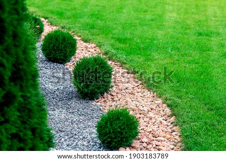 Landscape bed of garden with wave ornamental growth cypress bushes gravel mulch by color rock way on a day spring park with green lawn meadow close up details, nobody. Royalty-Free Stock Photo #1903183789