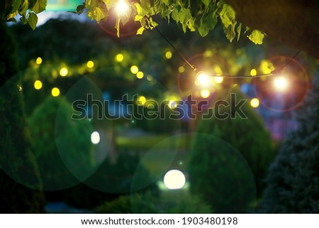 illumination holiday lights glare on garden with electric garland bulbs of warm light glow with round bokeh evening illuminate night scene of outdoor landscaped park with thuja bushes and tree nobody. Royalty-Free Stock Photo #1903480198