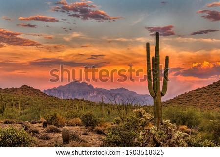 Sunset in the Sonoran Desert near Phoenix, Arizona Royalty-Free Stock Photo #1903518325