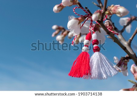 Spring background with white blossom and Bulgarian symbol of spring - martenitsa. March 1 tradition white and red cord martisor and spring flowers. Cheerful concept of beginning of spring. Copy space Royalty-Free Stock Photo #1903714138