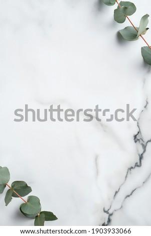 Frame made of eucalyptus leaves on marble background. Wedding invitation card mockup, minimal style.  Royalty-Free Stock Photo #1903933066