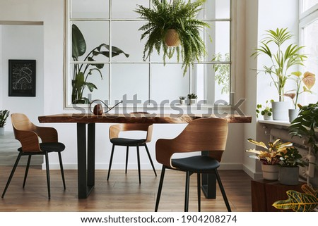 Stylish and botany interior of dining room with design craft wooden table, chairs, a lof of plants, window, poster map and elegant accessories in modern home decor. Template. Royalty-Free Stock Photo #1904208274