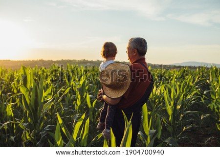 Happy family in corn field. Family standing in corn field an looking at sun rise Royalty-Free Stock Photo #1904700940
