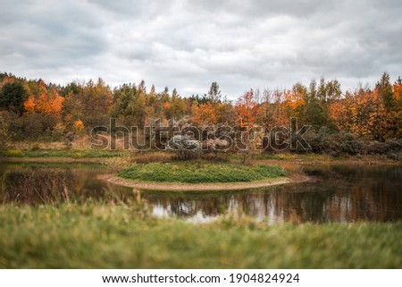 Autumn scene in a nature reserve with a pond and island in the middle of lake gorgeous orange colours leaves falling in the fall wildlife reflections in river water plants serene deserted Royalty-Free Stock Photo #1904824924