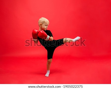 a little boy boxer stands sideways in red boxing gloves and makes a kick on a red background with space for text Royalty-Free Stock Photo #1905022375