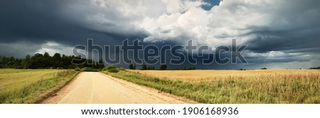 A dirt road through the agricultural field and forest under cumulus clouds after the rain, golden sunlight. Dramatic cloudscape. Idyllic rural landscape. Picturesque panoramic scenery Royalty-Free Stock Photo #1906168936