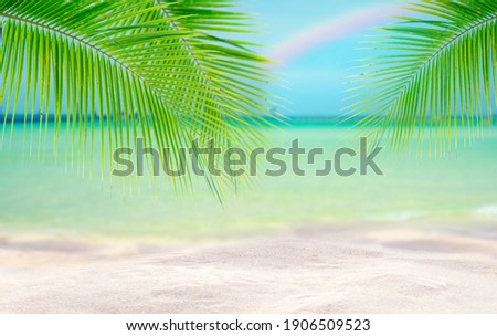 Coconut tree leaf on the tropical beach with space for text , summer,holiday, vacation weekend or relax ,summer mid year sale concept