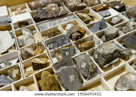 Rock core samples a geological laboratory Royalty-Free Stock Photo #1906695415