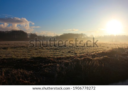 Bright sunlight illuminates a Dutch pasture landscape. Photo was taken on a cold winter morning.