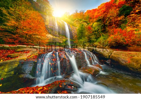 Waterfall view in the forest that contains all the colors of autumn. Waterfall in autumn colors. Uludag Suuctu waterfall national park, Bursa. Royalty-Free Stock Photo #1907185549