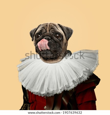 Tasty. Model like medieval royalty person in vintage clothing headed by dog head on yellow peach background. Concept of comparison of eras, artwork, renaissance, baroque style. Creative collage. Royalty-Free Stock Photo #1907639632