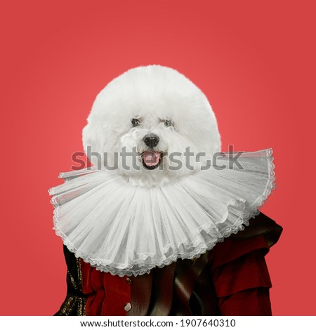 Snowflake. Model like medieval royalty person in vintage clothing headed by dog head on red background. Concept of comparison of eras, artwork, renaissance, baroque style. Creative collage.