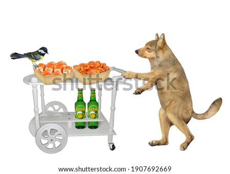 A dog pushes a service table trolley with bottles of beer and boxes of sushi and shrimp. White background. Isolated.