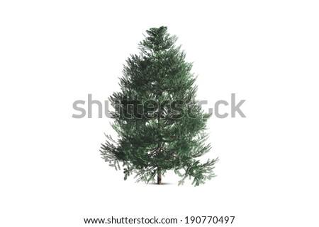 Single tree, isolated on white background. #190770497