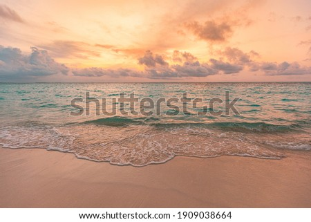 Closeup sea sand beach. Panoramic beach landscape. Inspire tropical beach seascape horizon. Orange and golden sunset sky calmness tranquil relaxing sunlight summer mood. Vacation travel holiday banner Royalty-Free Stock Photo #1909038664