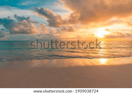 Closeup sea sand beach. Panoramic beach landscape. Inspire tropical beach seascape horizon. Orange and golden sunset sky calmness tranquil relaxing sunlight summer mood. Vacation travel holiday banner Royalty-Free Stock Photo #1909038724