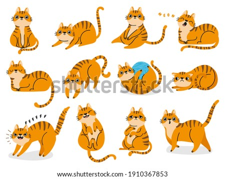 Cat poses. Cartoon red fat striped cats emotions and behavior. Animal pet kitten playful, sleeping and scared. Cat body language  set. Illustration pet cat, cute striped animal kitten