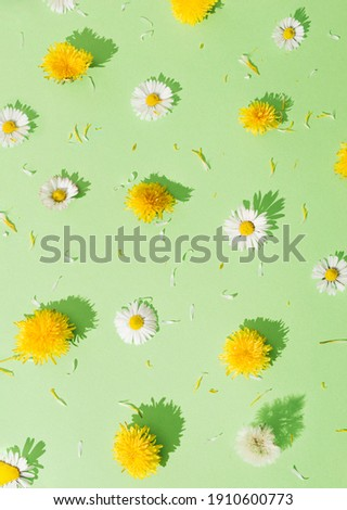 Different types of flowers arranged as a pattern. Yellow and white flowers on a green background.. International Women's Day  concept. Minimal flay lay.