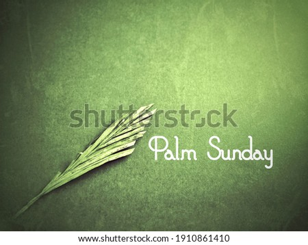 Lent Season,Holy Week and Good Friday Concepts - Palm Sunday text with green vintage background. Stock photo.