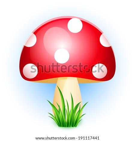 Illustration of amanita in grass