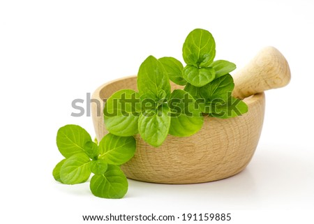 mint leaves in a mortar #191159885