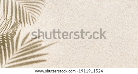Banner of Palm leaf shadow on sand, top view, copy space  Royalty-Free Stock Photo #1911911524