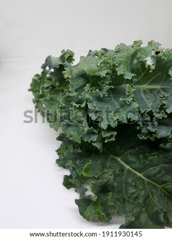 Closeup Curl leaf kale on white background , green leaf kale,Horizontal picture
