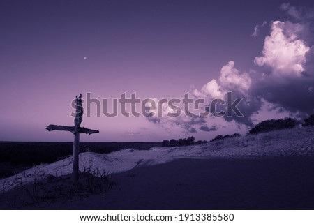 Purple landscape with wooden Cross or crucifix.  Concept for Lent Season, Holy Week, Palm Sunday and Good Friday. Royalty-Free Stock Photo #1913385580