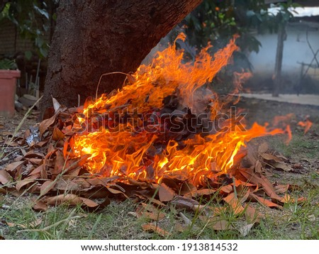 Selective focus of a burning fire, pollution from burning waste at open area, garbage from household, toxic burn trash danger, out of focus, noise and grain effects, enviroment concept. Royalty-Free Stock Photo #1913814532