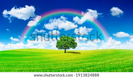 Idyllic panoramic landscape, lonely tree with rainbow among green fields, in the background blue sky and white clouds Royalty-Free Stock Photo #1913824888