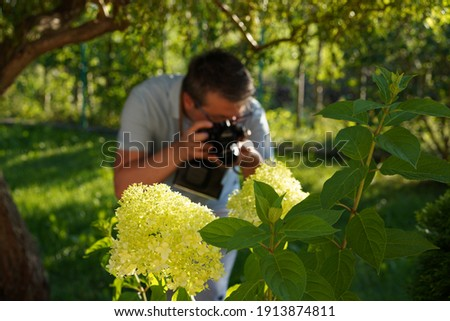 It's summer. The man is in the garden. The man in a blue t-shirt is taking pictures of hydrangea flowers.